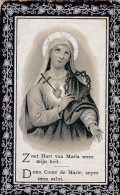 1843-1906 Roslie De Winne Van De Velde Aygem Aaigem Ressegem Herzele Erpe-Mere Doodsprentje Bidprentje Image Mortuaire - Devotion Images