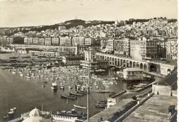 7-3ay75. Postal Argelia. Vista Genral Del Puerto - Argelia
