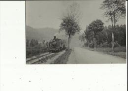 Photo Du Train - Animé Conducteur_Faisant La Ligne De La Vallée De Celles - Francia