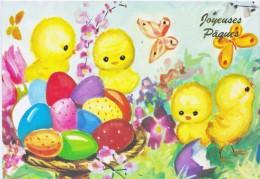 Paques-poussins-oeufs-papillon - Pâques