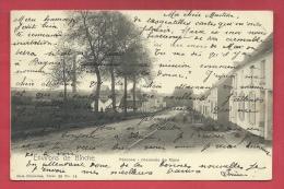 Péronne ( Environs De Binche ) - Chaussée De Mons - 1905  ( Voir Verso ) - Binche