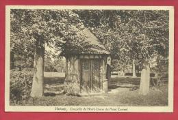 Havay - Chapelle De Notre-Dame Du Mont Carmel - 1953  ( Voir Verso ) - Quévy