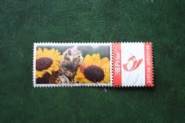 BLOEMEN BLUME FLEUR FLOWER Duostamps Persoonlijke Postzegel Timbre Personalisé Oblitéré Gestempeld Used Belgie Belgique - Belgique