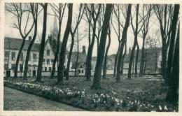 BRUGGE - Begijnhof - Brugge