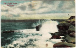 The Pacific Ocean, Surf Scene 1910 - Postcards