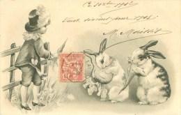Animaux -   Illustration Carte Gaufré Enfant Lapins Carottes. D 900 - Sonstige