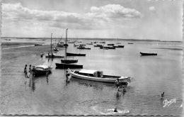 33 ANDERNOS - Vue Sur Le Bassin D'arcachon.. - Andernos-les-Bains