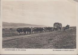 South Africa - Ox Waggon - Old Stamp - Südafrika