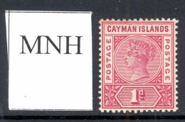 CAYMAN ISLANDS, 1900 1d Rose-carmine Mint Never Hinged (MNH), SG2, Cat £16 - Kaaiman Eilanden