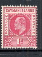 CAYMAN ISLANDS, 1902 1d (wmk CA Single) Superb Mint Very Lightly Hinged, Cat £10 - Kaaiman Eilanden
