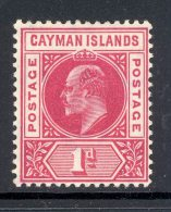 CAYMAN ISLANDS, 1905 1d (wmk CA Multiple) Superb Mint Very Lightly Hinged, Cat £22 - Kaaiman Eilanden