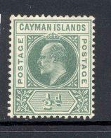 CAYMAN ISLANDS, 1905 ½d (wmk CA Multiple) Superb Mint Very Lightly Hinged, Cat £12 - Kaaiman Eilanden