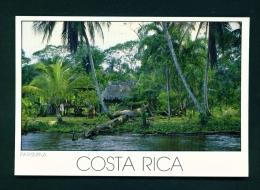 COSTA RICA  -  Limon  Parismina  Unused Postcard - Costa Rica