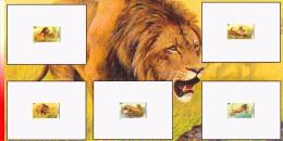 Congo 2094/98 - 5 Epreuves de luxe   -  Dessin de Buzin