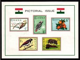 Ghana MNH Scott #199a Souvenir Sheet Of 5 Mousebird, Grey Parrot, Tulip Tree, Starlings, Hippopotamus - Ghana (1957-...)