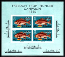 Ghana MNH Scott #254a Souvenir Sheet Of 4 30pa Red Snapper - Freedom From Hunger Campaign - Creased - Ghana (1957-...)