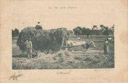 83 // LA VIE AUX CHAMPS    La Fenaison  / Agriculture /  12EME COMPAGNIE VOIR VERSO - France