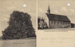 1925    Schwanebeck   -  Herrgottskapelle -  600jährigeLinde - Unterharz