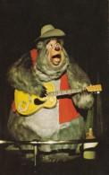 Big Al The Country Bear Jamboree Walt Disney World Orlando Flori