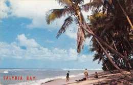 TRINIDAD (Kleine Antillen) - Salybia Bay, Gel.1962, Kleinformat, Abgelöste Marke - Trinidad
