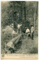 Labeque 32 Dans La Forêt Landaise La Coupe Des Pins - Unclassified
