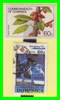 DOMINICA  ISLAS   3 SELLOS   DIFERENTES  AÑOS Y VALORES - Dominica (1978-...)