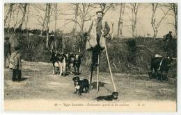 Type Landais MD 19 Echassier Gardien De Vaches (Sylvain DORNON) - Unclassified