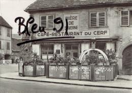 SAVERNE CAFE RESTAURANT DU CERF - Saverne