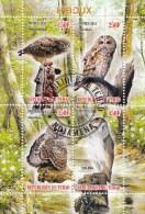 Hiboux Owls Uilen  Rep. Tchad 2011  Oblitérés-Used-Gestempeld - Uilen