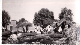 CP Photo Fort Lamy  Casseurs De Bois - Ciad