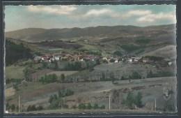CPSM 42 - Saint-Priest-Laprugne, Vue Générale - Andere Gemeenten