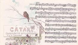 Italia Cartolina Musicale Bideri Nuova, Catari - Postcards