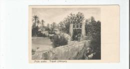 TRIPOLI (AFRIQUE) PUITS ARABE - Libyen
