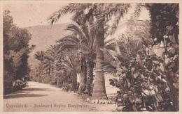 Italia 1924 Cartolina Usata, Ospedaletti Boulevard Regina Margherita, Spedita In Inghilterra - Postcards