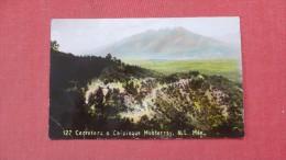 Mexico  RPPC  Color  Monterrey >= ======== ===  ref  96
