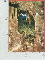 CARTOLINA VG ITALIA - GROTTE DI CASTELLANA (BA) - La Grave - 10 X 15 - ANN. 1982 - Bari