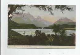 DART VALLEY FROM PARADISE  N Z 214      1909 - Nouvelle-Zélande