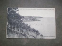 Carte Postale Ancienne De Saint-Brieuc: Panorama Pris De La Pointe De Cesson - Saint-Brieuc