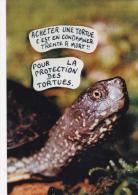 CPM Protection Des Tortues Protection Animale Animal Welfare Turtle Tortoise Tirage Limité LARDIE - Schildpadden