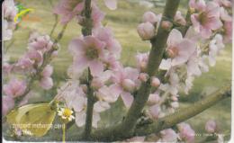 BHUTAN - Flowers, Bhutan Mobile Prepaid Card Nu.500, Used