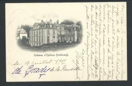 CPA - Château D' OPLIEUX - Limbourg - Kasteel  // - Belgium