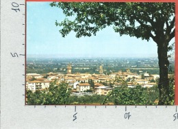 CARTOLINA VG ITALIA - CASTEL S. PIETRO TERME (BO) - Stazione Di Cura E Soggiorno - Panorama - 10 X 15 - ANN. 1974 - Altre Città