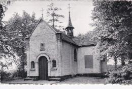 HERENTALS.-- KAPELLEKE VAN DE KRUISBERG - Grote Plooi 1952 - Kasterlee