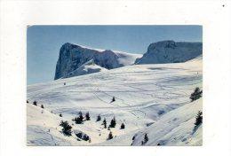 (05) SUPER-DEVOLUY - Les Pistes Et Pic De Bure - Francia