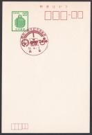 Japan Commemorative Postmark, Houya Post Office (jch1007) - Japan