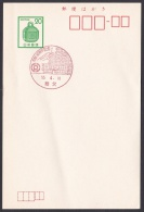 Japan Commemorative Postmark, Chichibu City (jch1014) - Japan