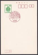Japan Commemorative Postmark, Cherry Blossoms Festival (jch1016) - Japan