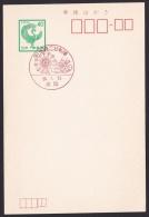 Japan Commemorative Postmark, Ferris Wheel Space (jch1771) - Japon