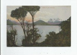 HEAD OF LAKE WAKATIPU  N Z 223 - Nouvelle-Zélande