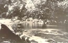 Malaisie - Penang, Environs De Penang, Rivière (pas Une Carte Postale, Photo 1925 26) - Malaysia